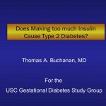 Does making too much insulin cause type 2 diabetes?