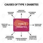 The Causes Of Diabetes Type 1, Infographics Illustration On Isolated..  Royalty Free Cliparts, Vectors, And Stock Illustration. Image 96782486.