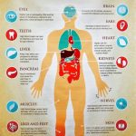How Diabetes Affects The Body - Effects of Diabetes - Digital Print House