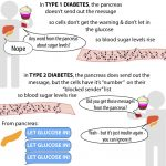 Diabetes, insulin, and glucometers – The Bumbling Biochemist