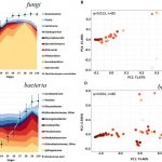 Frontiers | Characterization of Microbial Dynamics and Volatile Metabolome  Changes During Fermentation of Chambourcin Hybrid Grapes From Two  Pennsylvania Regions | Microbiology