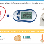 Grain fibre, productivity, and type 2 diabetes and cardiovascular disease  in New Zealand | The Science of Human Potential