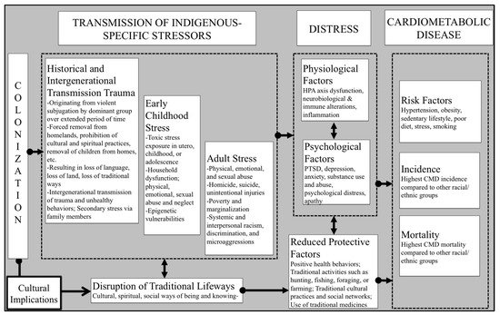 IJERPH | Free Full-Text | Stress and Cardiometabolic Disease Risk for  Indigenous Populations throughout the Lifespan | HTML