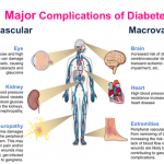 Which organ does diabetes affect the most? - Quora