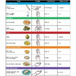Natural Tips For Controlling Diabetes - Tips For Diabetes Control