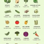 """A handy chart that shows carb counts for """"garden-variety"""" vegetables –  DIABETES IS BAD!"""