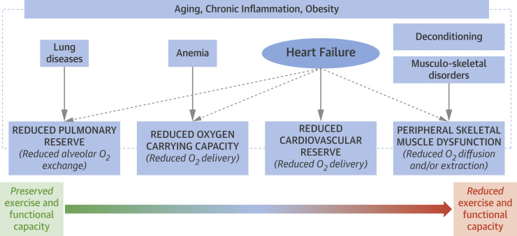 Exercise Intolerance in Patients With Heart Failure: JACC State-of-the-Art  Review - ScienceDirect