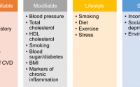 Cardiovascular risk assessment models: Have we found the perfect solution  yet?   SpringerLink