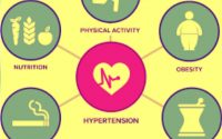 WAYS TO PREVENT HYPERTENSION (High blood pressure) - Welcome to dulloff  blog's