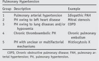 PDF] World Health Organization Pulmonary Hypertension group 2: pulmonary  hypertension due to left heart disease in the adult--a summary statement  from the Pulmonary Hypertension Council of the International Society for  Heart and