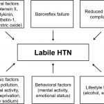 Labile hypertension: a new disease or a variability phenomenon?   Journal  of Human Hypertension