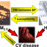 Clearing the air to treat hypertension | Journal of Human Hypertension