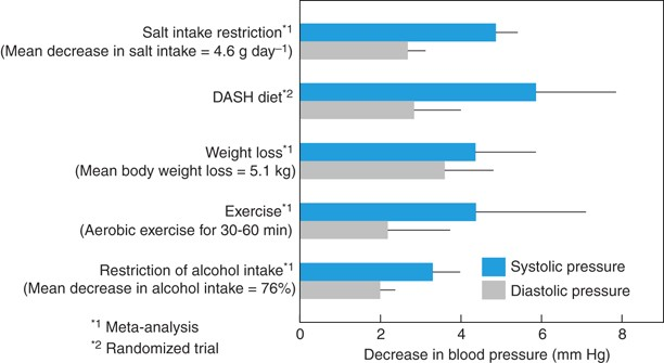 Blood pressure differences by race: the importance of assessing lifestyle    Hypertension Research
