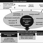 Obstructive sleep apnea syndrome and hypertension: mechanism of the linkage  and 24-h blood pressure control | Hypertension Research