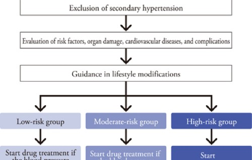 Chapter 3. Principles of treatment | Hypertension Research