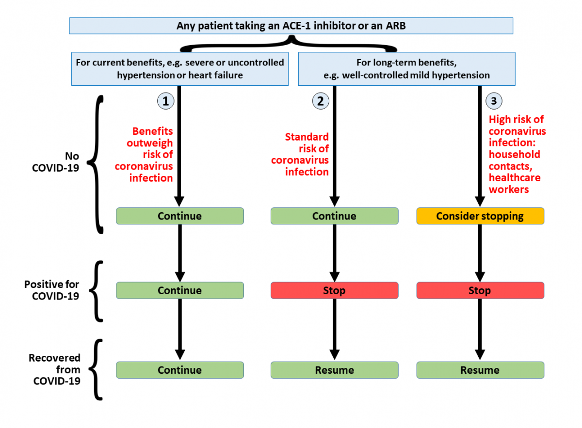 Angiotensin converting enzyme (ACE) inhibitors and angiotensin receptor  blockers in COVID-19 - The Centre for Evidence-Based Medicine