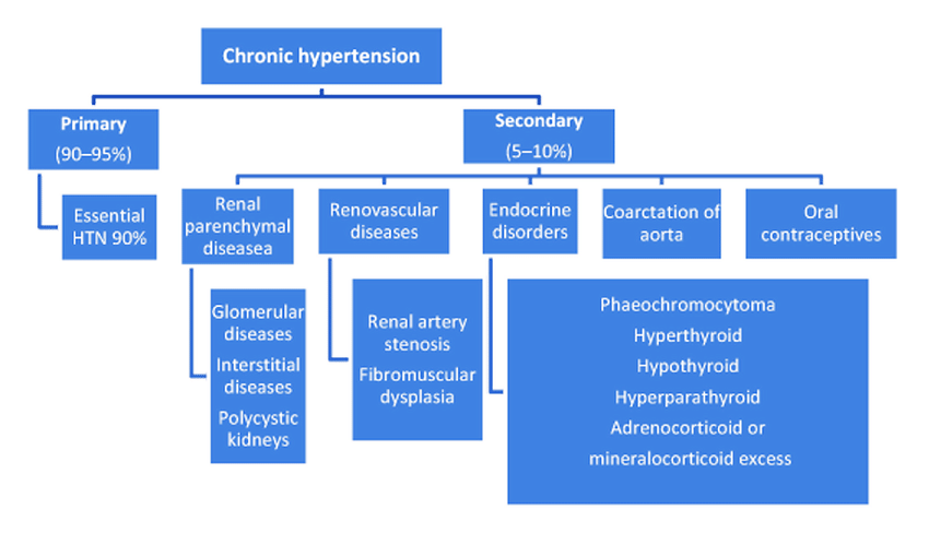 Causes of chronic hypertension (HTN) in pregnancy.   Download Scientific  Diagram