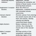 Classes of medication in the treatment of hypertension. | Download Table