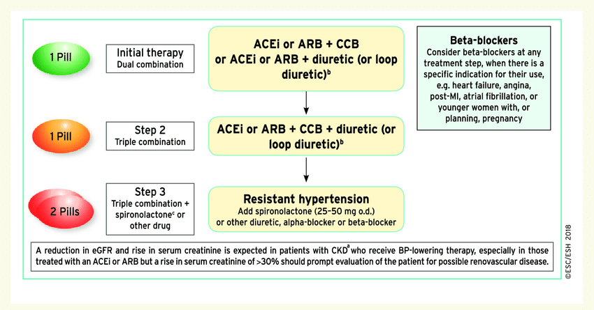 Drug treatment strategy for hypertension and chronic kidney disease....    Download Scientific Diagram