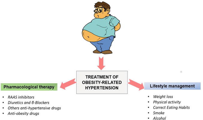 """The """"Weight"""" of Obesity on Arterial Hypertension 