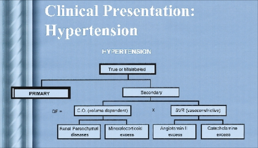 Organization for the clinical presentation of hypertension. | Download  Scientific Diagram