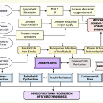 Pathophysiological effect of cigarette smoking and nicotine on... |  Download Scientific Diagram