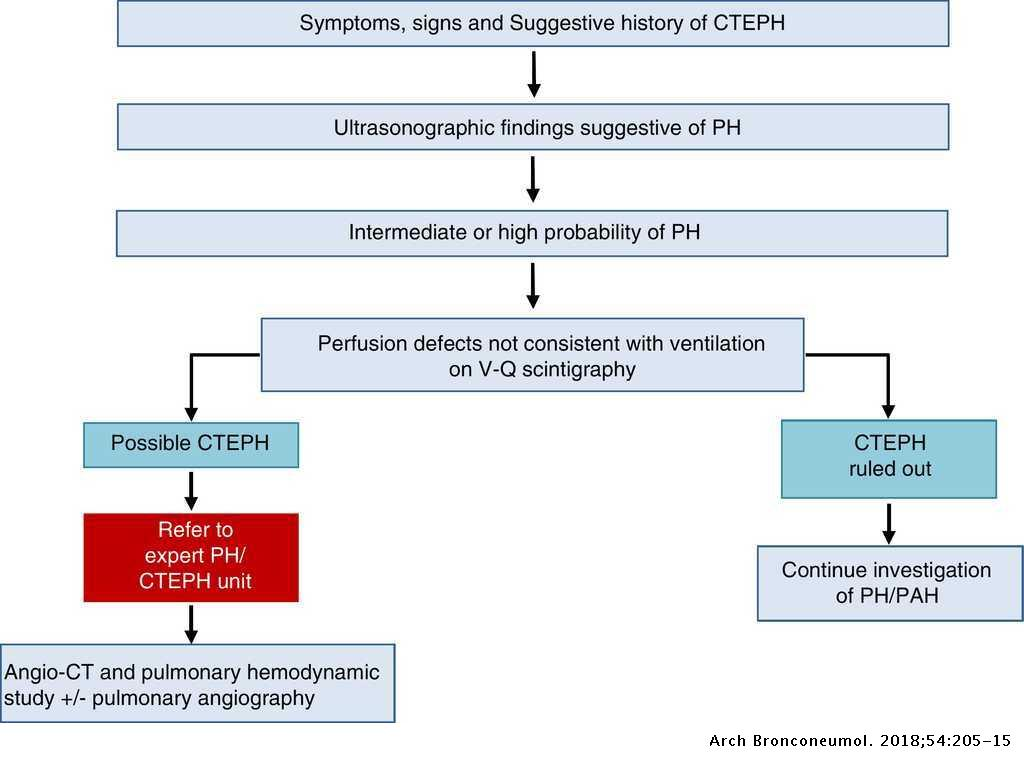 Guidelines on the Diagnosis and Treatment of Pulmonary Hypertension:  Summary of Recommendations | Archivos de Bronconeumología