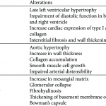 Target organ damage in chronic sinoaortic denervated rats.   Download Table
