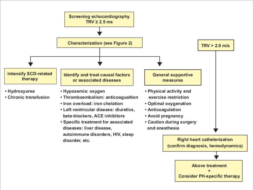 Treatment algorithm for pulmonary hypertension associated with sickle... |  Download Scientific Diagram