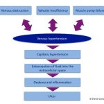 Essential Decalogue in the fight against venous hypertension