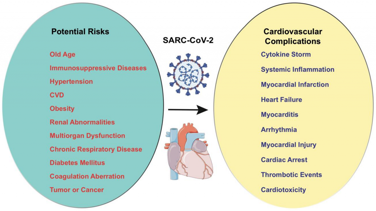 Cells   Free Full-Text   Cardiovascular Manifestations of COVID-19  Infection   HTML