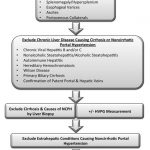 Approach to the diagnosis of portal hypertension - Koh - 2012 - Clinical  Liver Disease - Wiley Online Library