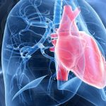 5 Things We Now Know About Pulmonary Arterial Hypertension   Johnson &  Johnson