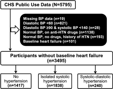 Systolic–diastolic hypertension versus isolated systolic hypertension and  incident heart failure in older adults: Insights from the Cardiovascular  Health Study - International Journal of Cardiology