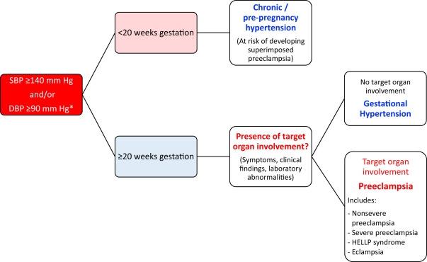 Hypertension Canada's 2018 Guidelines for the Management of Hypertension in  Pregnancy - Canadian Journal of Cardiology
