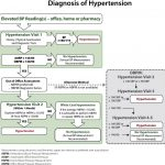 The 2015 Canadian Hypertension Education Program Recommendations for Blood  Pressure Measurement, Diagnosis, Assessment of Risk, Prevention, and  Treatment of Hypertension - Canadian Journal of Cardiology