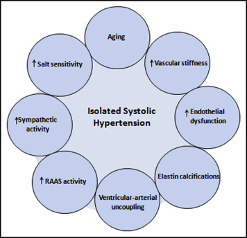 Isolated Systolic Hypertension: An Update After SPRINT - The American  Journal of Medicine