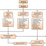 Effects of smoking on cardiovascular function: the role of nicotine and  carbon monoxide | Insight Medical Publishing