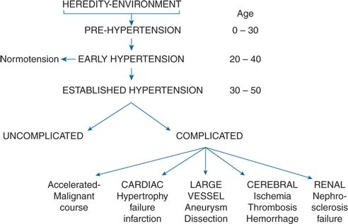 Primary Hypertension: Natural History and Evaluation | Neupsy Key