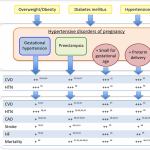 Hypertensive Disorders of Pregnancy and Future Maternal Cardiovascular Risk  | Journal of the American Heart Association