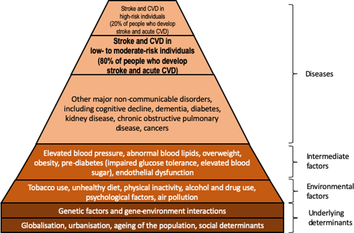 What Is the Best Mix of Population‐Wide and High‐Risk Targeted Strategies  of Primary Stroke and Cardiovascular Disease Prevention?   Journal of the  American Heart Association