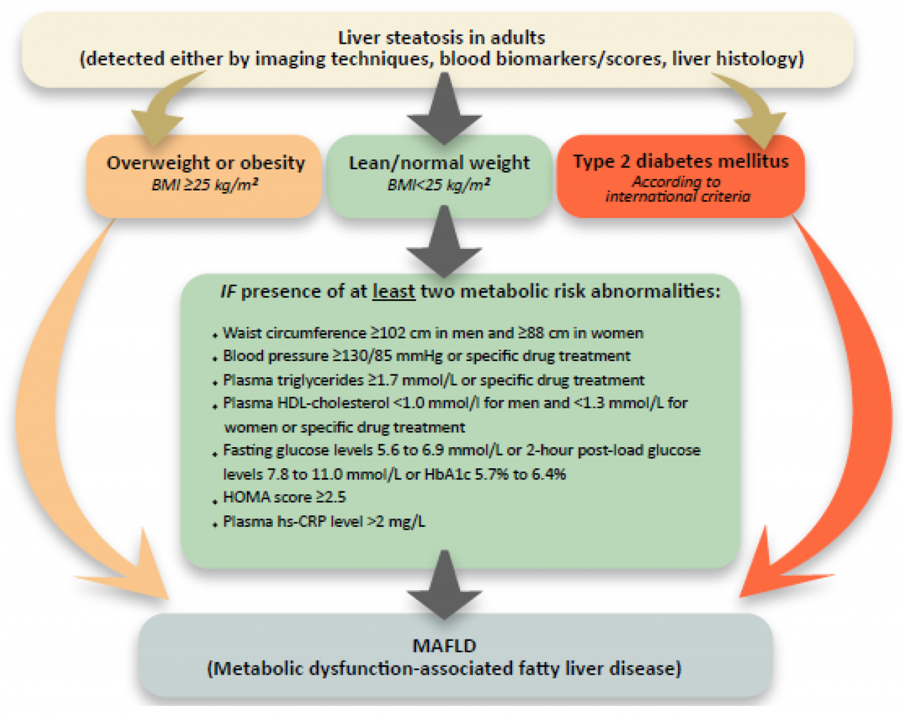 Medicina | Free Full-Text | Ultrasound Elastography—Cornerstone of  Non-Invasive Metabolic Dysfunction-Associated Fatty Liver Disease  Assessment | HTML