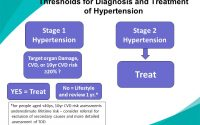 Assessment, Targets, Thresholds and Treatment Bryan Williams NICE clinical  guideline ppt download