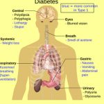 News24healthcare: What is Type 1 Diabetes and type 2 Diabetes Treatment