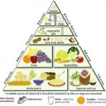 What is the diabetic Food Pyramid? - wordsmith