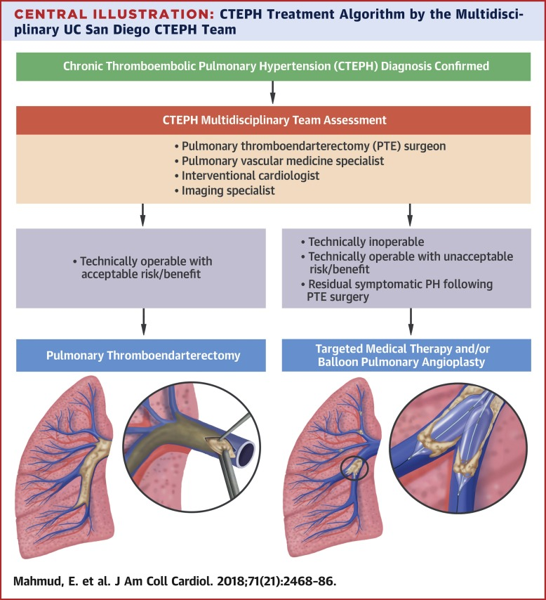Chronic Thromboembolic Pulmonary Hypertension: Evolving Therapeutic  Approaches for Operable and Inoperable Disease - ScienceDirect