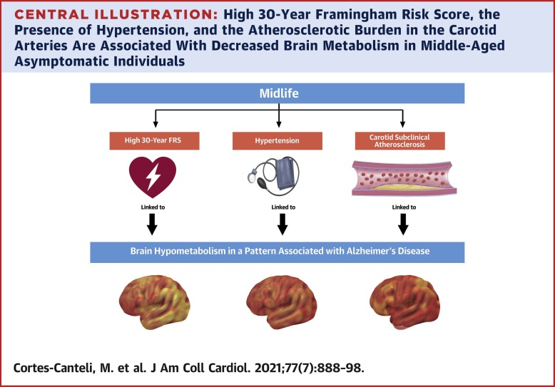 Subclinical Atherosclerosis and Brain Metabolism in Middle-Aged  Individuals: The PESA Study - ScienceDirect