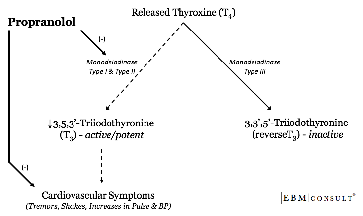 Why Propranolol Is Preferred to Other Beta-Blockers in Thyrotoxicosis or  Thyroid Storm