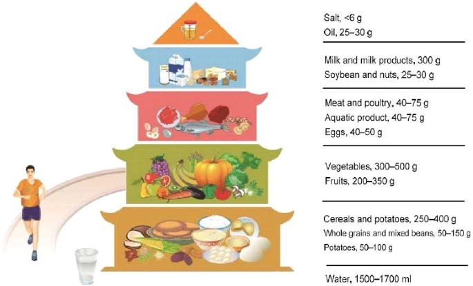 Dietary Guidelines for Chinese Residents (2016): comments and comparisons |  SpringerLink