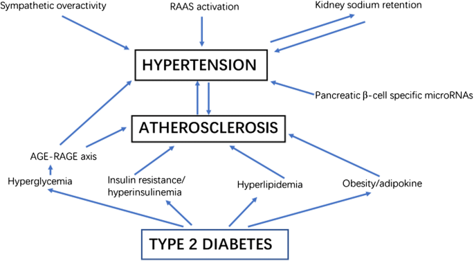 Searching for optimal blood pressure targets in type 2 diabetic patients  with coronary artery disease | Cardiovascular Diabetology | Full Text